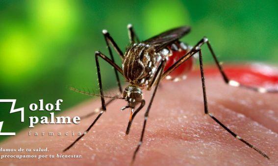 Farmacia Olof Palme Mosquitos